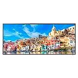 Samsung QM105D 266 cm ( (105 Zoll Display),LCD-Fernseher,1000 Hz )