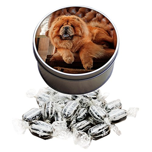 chow-chow-dog-animal-everton-mint-sweet-tin-085