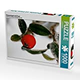 Felsenmispel mit Frost 1000 Teile Puzzle Quer