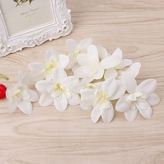 Enyu – 10 cabezales de orquídeas artificiales para novia, broche de Navidad, manualidades, boda blanco
