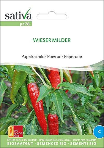 Paprika mild Wieser Milder | Bio-Paprikasamen