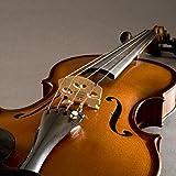 Fishman Concert Series Micro pour violon