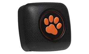PitPat 2 - Dog Activity Monitor