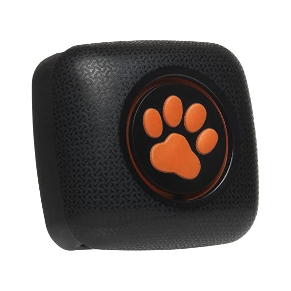 PitPat Dog Activity Monitor and Fitness Tracker - Lightweight and waterproof with no recharging or subscription (latest version, as seen on television) 1