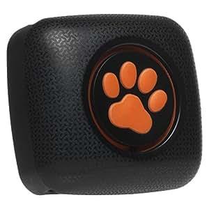 PitPat 2 - Moniteur d'activité pour chien
