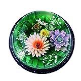 ZREAL 11Piezas/Juego 3D gelatina gelatina Pudding Flor Instrumentos de Arte de Acero Inoxidable Boquillas pastelería jeringa Agujas Tarta Que Decora Instrumento