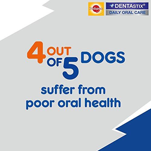 Pedigree DentaStix Hundesnack für mittelgroße Hunde (10-25kg), Zahnpflege-Snack mit Huhn und Rind, 10 Packungen je 7 Stück (10 x 180 g) - 3