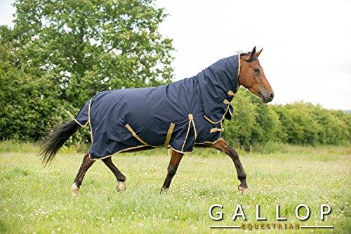 Gallop Trojan - Manta de caballo con cuello, 100g - EU 140cm
