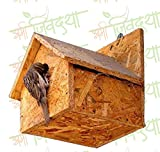 #3: Amijivdaya Wooden Bird House Water Resistance