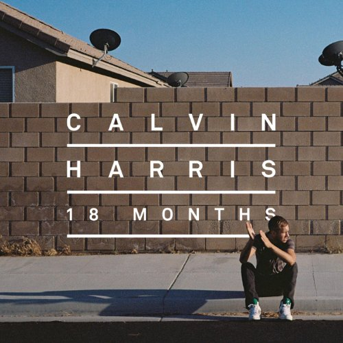 Calvin Harris featuring Florence Welch - Sweet Nothing