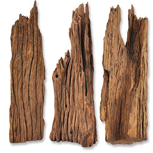 Wurzel Mangrovenwurzel Holz Treibholz für Terrarium Aquarium Zubehör Garten Deko Reptilien Echtholz 60 - 100 cm 100 % Natur *alles Einzelstücke* - Treibholz Terrarium