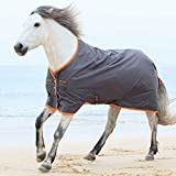 Horseware Amigo Turnout Hero 6 lite Excalibur orange Regendecke (145)