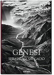 Fo-Salgado. Genesis - Italien
