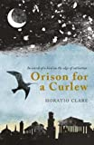 Orison for a Curlew: In Search of a Bird on the Edge of Extinction