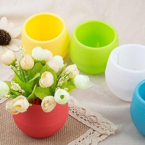 Yoo 5pcs Fashionayooble Pot de fleurs Pot de fleurs à nourriture savoir Maison Fournitures