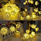 Citra 30 Led String Strip Light Rose Flower Shape Diwali Light for Decoration 30Led- Warm White
