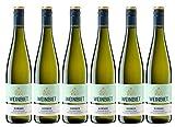 Weinbiet Manufaktur eG Gimmeldinger Meerspinne Kerner 2017 Halbtrocken Weißwein