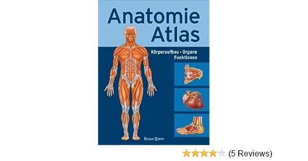 Anatomie-Atlas: Körperbau Organe Funktionen: Amazon.de: Adolfo ...