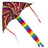 TDP24 - Premium Einleiner Drachen für Kinder ab 3 Jahren - inkl. 30m Drachenschnur - 126/60cm - Beeindruckender Rainbow Kite mit Schweif