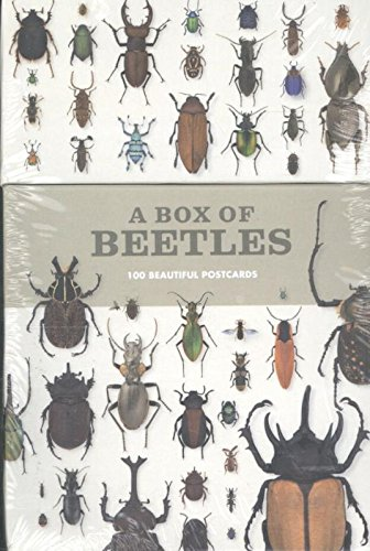 a-box-of-beetles-100-postcards-of-the-most-striking-breeds