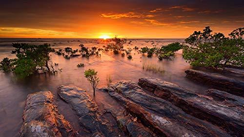 Puzzles for Adults 1000 Pieces Sonnenuntergang Mangrovenbüsche Meer Ozean Wasser Steine   Himmel Sonne Holz Montage Puzzle Piece Game