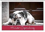 Hunde-Spruchreif (Wandkalender 2019 DIN A2 quer): Ein Kalender für Hundefreunde (Monatskalender, 14 Seiten ) (CALVENDO Tiere)