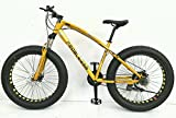 pedalease Big Cat Fat Bike MTB Snow Beach Federung vorne, Bremse, 21 Speed