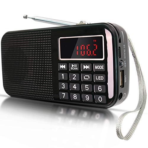FM Radio USB SD MP3 LAPTOP Rechargeable PRUNUS with Large Capacity BATTERY (3000mAh, long reproductions 30 Hours) with Emergency Flashlight, Memorizes stations automatically (Without Manual)