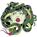 Medusa serpents brodée Patch X-Files type UFO Soucoupe Aliens Science Fiction Humour Comics comédie horreur Cryptids créatures Monster Série thermocollant patchs à coudre Emblem Ecusson Application