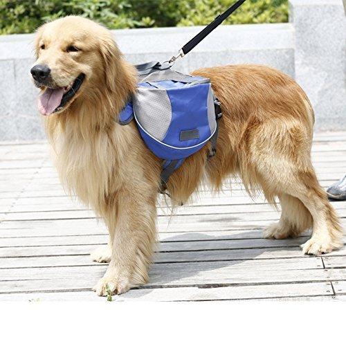 Pettom Hunderucksack Schultertasche für Hunde Reisen Camping Wandern Transportbox Haustiertasche tragbar Tasche Best Waterproof Breathable Quick Release Carriers S / M / L -