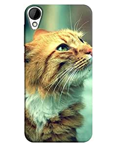 HTC Desire 825 Back Cover By FurnishFantasy