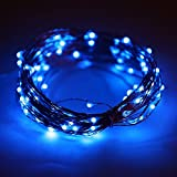 Kids Goods Best Deals - Eastchina®  5m/17ft Battery Powered Led Copper Lights, Led String Lights, With 50 Micro Super Bright Leds, Battery Powered Led Tree Lights, Good For Wedding, Birthday, Festival, Kid's LED Gift, New Year lights, Valentine's Day,Christmas Party, Decoration,