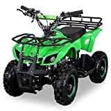 NEU Kinder Miniquad TORINO 49 CC MOTOR 2 Takt ATV Pocket Quad Kinderquad