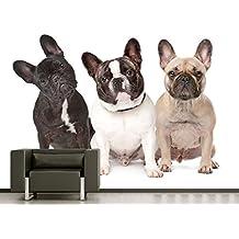 "Bilderdepot24 Fotomural ""Tres bulldogs franceses"" 200x150 cm - directamente desde el fabricante"