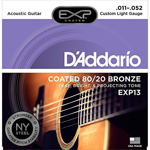 D'Addario EXP13 Satz mikrobeschichtete Bronzesaiten (80/20) für Akustikgitarre 011' - 052'