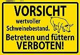 Schatzmix Vorsicht wertvoller Schweinebestand warnungschild blechschild