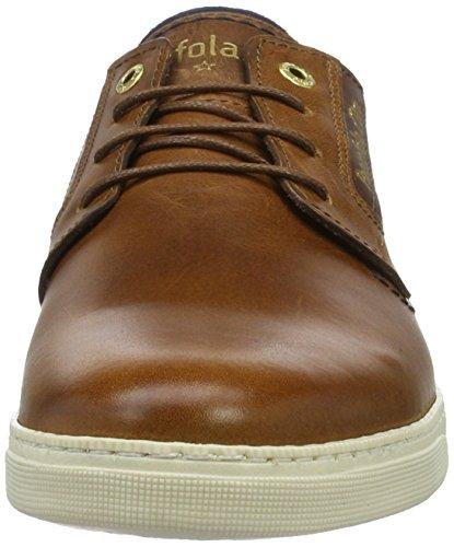 Pantofola d'Oro Vigo Uomo Low, chaussons d'intérieur homme Marron (tortoise shell 1005)