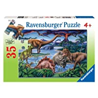 Dinosaur Playground 35 PC Puzzle