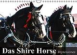 Das Shire Horse. Impressionen (Wandkalender 2018 DIN A4 quer): Die sanften Riesen mit den schönen Puschelfüssen (Gebur
