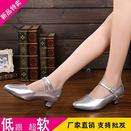 DGSA Square Dance Shoe Land messen Silber Latin Dance Shoe Silber innen Bgf