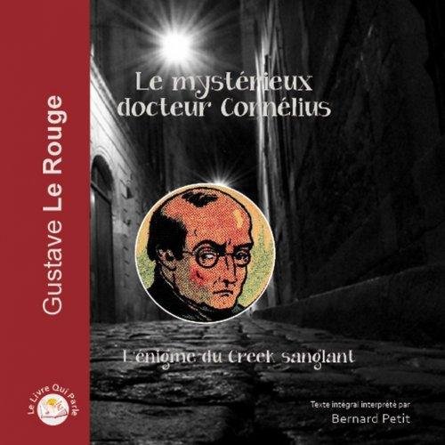 Le rubis volé (feat. Bernard Petit)