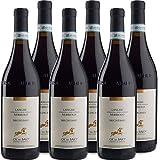 Langhe DOC Nebbiolo | Ca' del Baio | Vino Rosso Piemonte | Confezione 6 Bottiglie 75 Cl | Idea Regalo