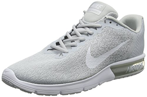 Nike Herren AIR MAX Sequent 2 Laufschuhe, Grau (Platinepur/grisloup/platinemétallisé/Blanc), 47.5 EU