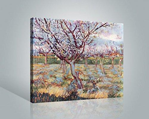 vincent-van-gogh-florecimiento-de-rboles-1888-cuadro-lienzo-montado-sobre-bastidor-50-x-40cm