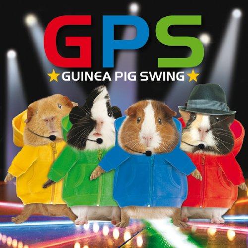 Meerschweinchen Karte - Grusskarte - GUINEA PIG SWING