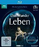 Life Das Wunder Leben. kostenlos online stream