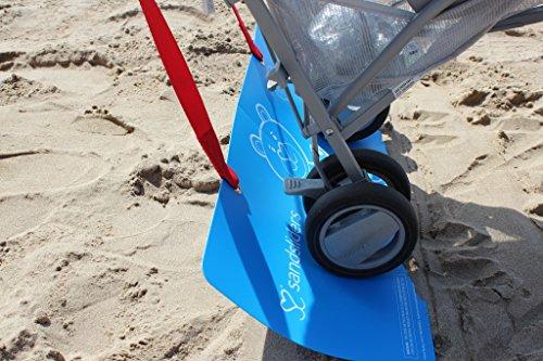 sandsliders (Eureka Sand)