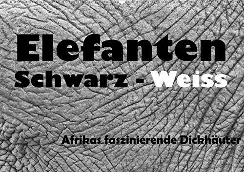 Elefanten Schwarz - Weiss (Wandkalender 2020 DIN A2 quer): Afrikas faszinierende Dickhäuter...