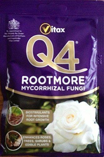 vitax-q4-plus-mycorrhizal-rootmore-60g-sachet-plant-root-enhancer-plant-rootmore-q4-rootmore-with-ad
