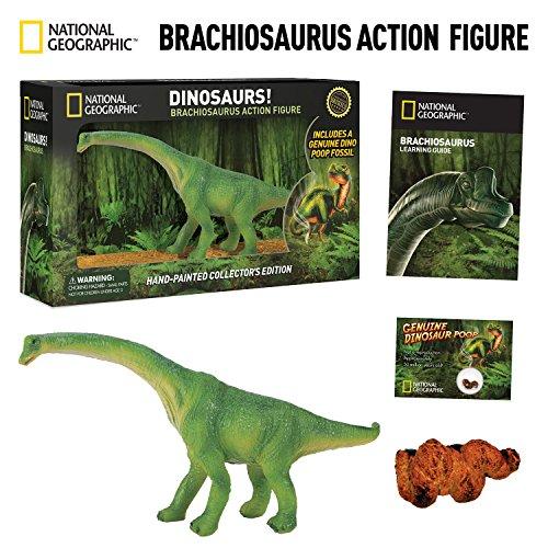 National Geographic Brachiosaurus Dinosaur by NATIONAL GEOGRAPHIC